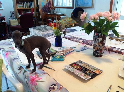 סקאיי מתכונן לשיעור ציור