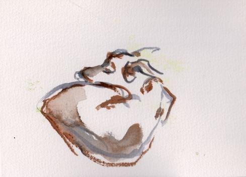 סקאיי, צבע מים, פברואר, 2013