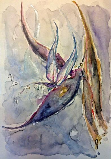 איריסיה קובליו, ציפור גן עדן, אקוורל, דצמבר, 2012