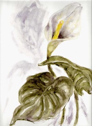 Iris Kovalio, 2008, watercolors