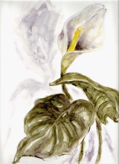 Iris Kovalio, 2008, watercolors