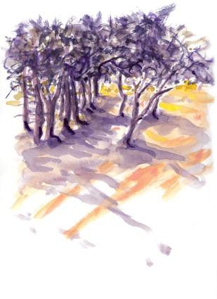 איריסיה קובליו, צבעי מים, 2008