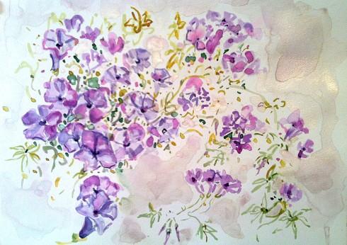 """איריס איריסיה קובליו, """"לפופית החיצים"""",  צבעי מים, קיץ 2013"""