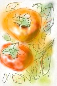 איריסיה  קובליו, אפרסמונים, ציור דיגיטאלי באייפון, אוקטובר 2013