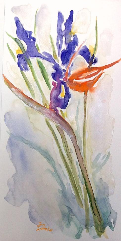 איריס איריסיה קובליו, צבעי מים, פברואר, 2014