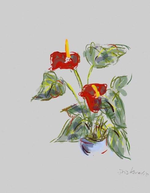 איריס קובליו, ציור דיגיטאלי, ספטמבר 2014