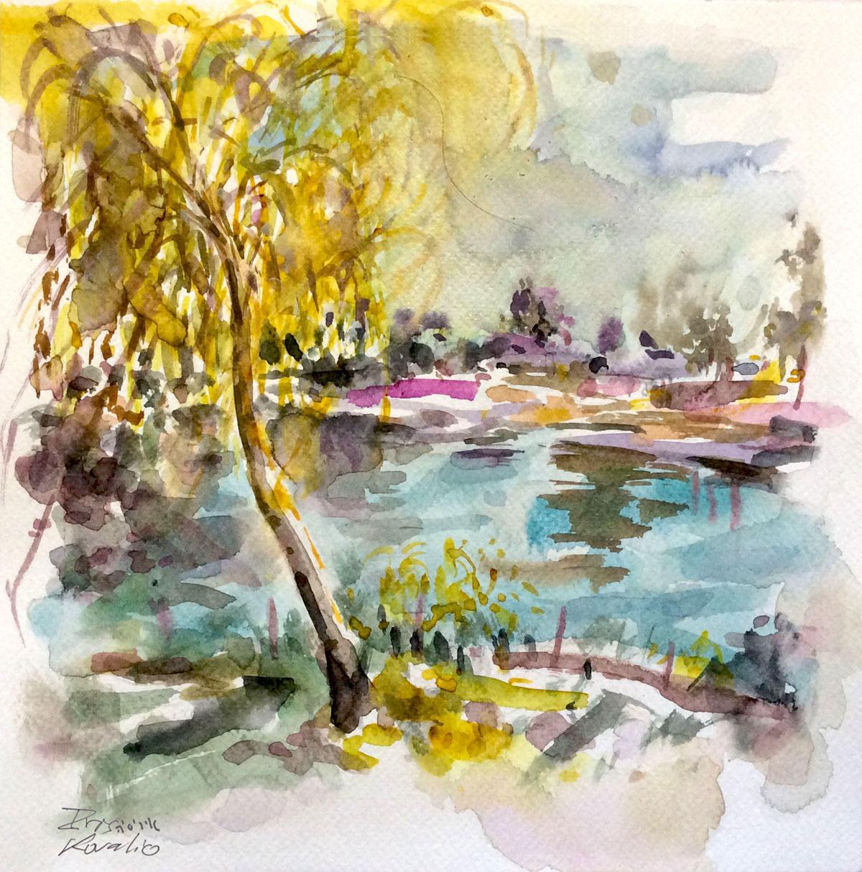 איריס קובליו, עקבה בוכייה באגם, ספטמבר, 2014