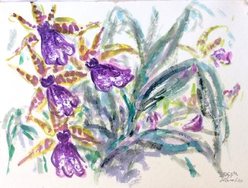 איריסי קובליו, פרפרי סחלב 1, אקוורל, אפריל 2011