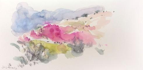 איריס איריסיה קובליו, שקדיות, נווה שלום, פברואר 2014. צבעי מים