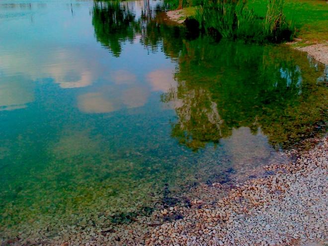 צילום: איריסיה קובליו. האגם בפארק הרצליה