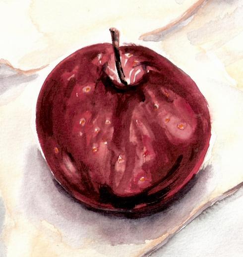 תפוח 1