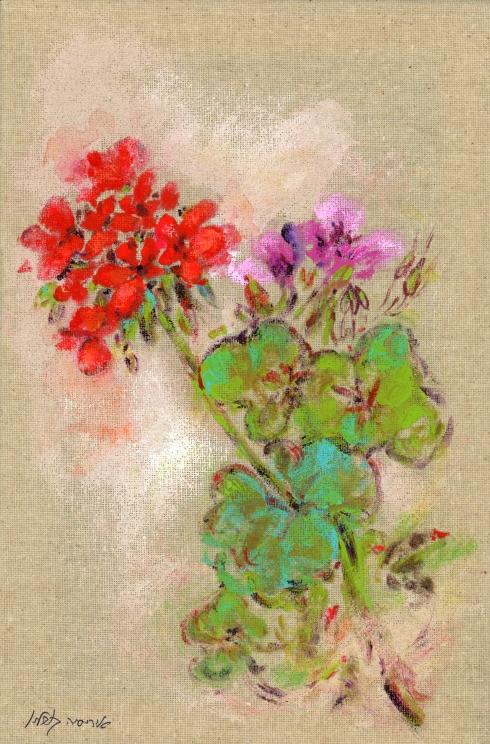 Iris Kovalio Geranium